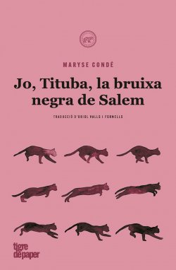 Jo, Tituba, la bruixa negra de Salem